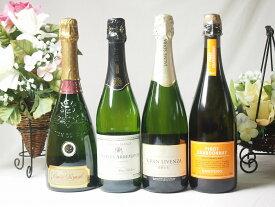 【第2弾】世界のスパークリング辛口ワイン飲み比べ!4本セット(スペイン、フランス2、イタリア)泡ワイン4本セット