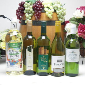 パーティー5本セット 高品質5ヵ国白ワインセット(イタリア フランス チリ スペイン 750ml 日本1500ml)飲み比べ5本セット
