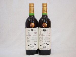 山梨県産マスカット・ベーリー2本セットA赤ワイン(ライトボディ)750ml×2
