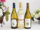 【スーパーセール10%OFF】セレクション 金賞受賞酒 フランスワイン 白ワイン 3本セット 750ml×3本 お歳暮 クリスマス