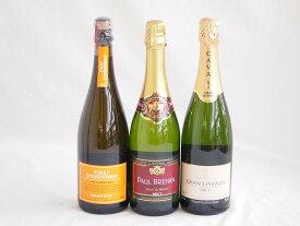 世界のスパークリングワイン飲み比べ!辛口3本セット(スペイン、フランス、イタリア泡ワイン3本セット