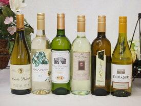 金賞受賞酒の入ったセレクション白ワイン6本セット(白6本) 750ml×6本