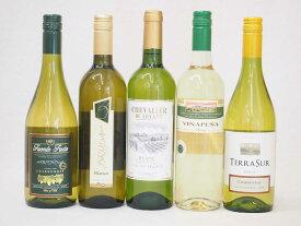 セレクション 白ワイン 5本セット( スペインワイン 1本 フランスワイン 1本 イタリアワイン 1本 チリワイン 2本)計750ml×5本