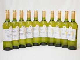 11本セットフランス金賞白ワイン ル プティソムリエシャルドネ2018年 やや辛口 750ml×11本
