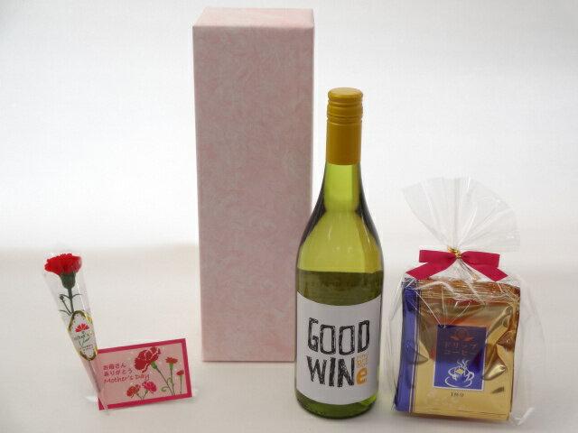 母の日 ギフトセット ワインセット 挽き立て珈琲(ドリップパック5パック)(GOODWINe ピノ・グリージョ 白ワイン750ml ネッド・グッドウィンMW監修(オーストラリア))母の日カード お母さんありがとうカーネイション