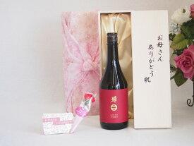 母の日 ギフトセット 日本酒セット お母さんありがとう木箱セット( 南部美人特別純米酒 720ml ) 母の日カード お母さんありがとうカーネイション