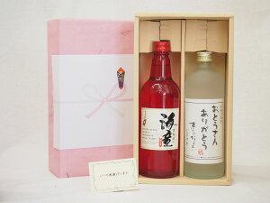夏の贈り物お中元 感謝贈り物ボックス 芋焼酎 2本セット(濱田酒造 海童 芋 720ml おとうさんありがとう 芋 720ml)