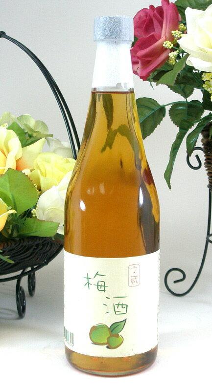 12本セット 木下醸造所 文蔵梅酒 18% 720ml×12本