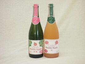 国産林檎 桃スパークリングワイン2本セット(やや甘口)(青森県 山梨県) 720ml 750ml