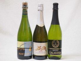 フルーツ甘口ワイン3本セット モンサラカバセミセック(スペイン) カラヴィニャモスカート(スペイン) 天使のアスティ(イタリア)750ml計3本