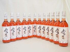 【最大2000円オフクーポン9日1:59迄】日本ワイン おたる醸造 日本産キャンベルアーリ ロゼ やや甘口 (北海道)720ml×12本