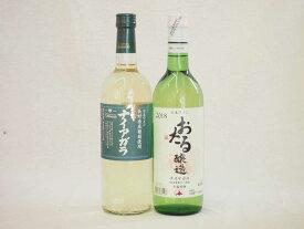 ナイアガラ北海道×長野県白ワイン2本セット 720ml×2本 やや甘口