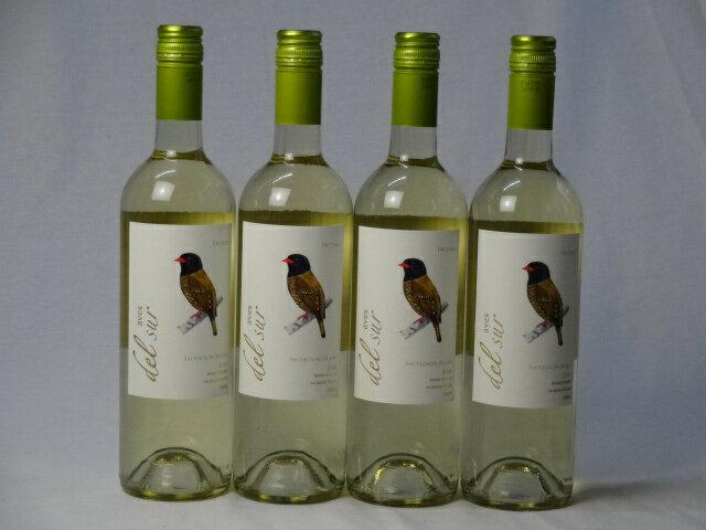 4本セット 辛口白ワイン デルスール ソーヴィニヨン ブラン(チリ) 750ml×4本