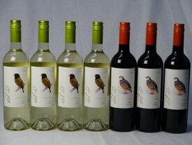 チリ白赤ワイン7本セット デル・スール カルメネール ミディアムボディ3本 デルスール ソーヴィニヨン ブラン 辛口4本 750ml×7本 バレンタイン