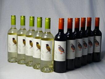 チリ白赤ワイン11本セットデル・スールカルメネールミディアムボディ6本デルスールソーヴィニヨンブラン辛口5本750ml×11本