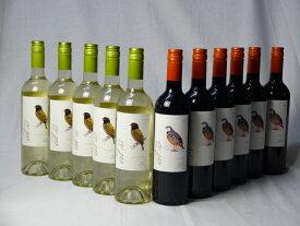 チリ白赤ワイン11本セット デル・スール カルメネール ミディアムボディ6本 デルスール ソーヴィニヨン ブラン 辛口5本 750ml×11本