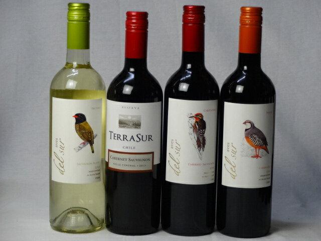 チリ赤白ワイン4本セット デル・スール カベルネ・ソーヴィニヨン フルボディ1本 デル・スールカルメネール 1本 テラスル ミディアムボディ1本 デル・スール ソーヴィニヨン ブラン 辛口1本 750ml×4本