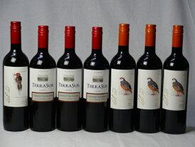 チリ赤ワイン7本セット デル・スール カベルネ・ソーヴィニヨン フルボディ1本 デル・スールカルメネール 3本 テラスル ミディアムボディ3本 750ml×7本 バレンタイン