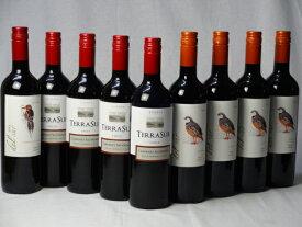 チリ赤ワイン9本セット デル・スール カベルネ・ソーヴィニヨン フルボディ1本 デル・スールカルメネール 4本 テラスル ミディアムボディ4本 750ml×9本 バレンタイン