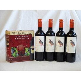 チリ産大容量赤ワイン飲み比べセット(サンタ・レジーナ カベルネ・ソーヴィニヨン 赤ワイン フルボディ3000ml デル・スール・