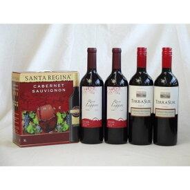 チリ産大容量赤ワイン飲み比べセット(サンタ・レジーナ カベルネ・ソーヴィニヨン 赤ワイン フルボディ3000ml クレマスキ リ