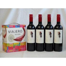 ワインセット チリ産大容量赤ワイン飲み比べセット(VIAJERO(ヴィアヘロ)赤ワイン3000ml デル・スール・カベルネソーヴ