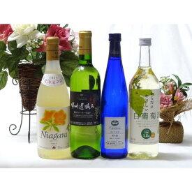 ワインセット 甘口白ワイン4本セット(ナイアガラ 遅摘み白 完熟ナイアガラ からだにやさしい白葡萄酒) 500ml×1本  72