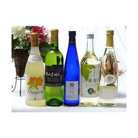 甘口白ワイン5本セット(ナイアガラ 遅摘み白 完熟ナイアガラ からだにやさしい白葡萄酒 梅ワイン) 500ml×1本  720m