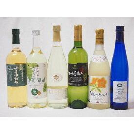甘口白ワイン6本セット(ナイアガラ 遅摘み白 完熟ナイアガラ からだにやさしい白葡萄酒 甘口白ワイン 梅ワイン)(山梨県・北海道