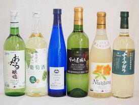 甘口白ワイン6本セット(ナイアガラ 遅摘み白 完熟ナイアガラ からだにやさしい白葡萄酒 甘口白ワイン おたるナイアガラ)500ml×1本 720ml×5本