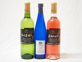 ワインセット 国産甘口ワイン3本セット(甲州遅摘みロゼ ナイアガラ 甲州遅摘み白) 500ml×1 720ml×2本(山梨県)