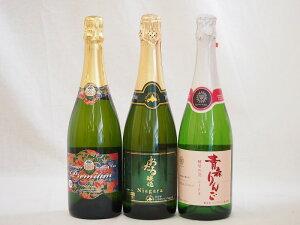 国産甘口スパークリング白ワイン3本セット(ナイアガラ (北海道)青森県産ふじ使用マディアップルセミスイート 酵母の泡 青森りんご) やや甘口 720ml×3