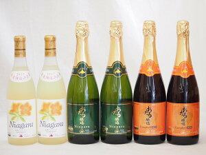 北海道おたるスペシャルワイン6本セット(やや甘口白)720ml×6本