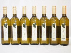 イタリア白ワイン チェヴィコ ブルーサ ビアンコ 750ml×7