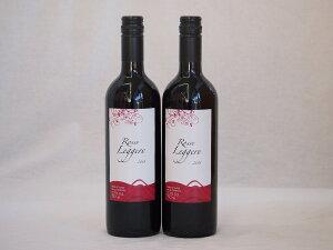 チリ赤ワイン クレマスキ ロッソ・リゲロ ミディアムボディ 辛口 750ml×2