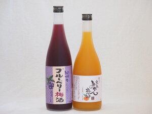 果物梅酒セット ブルーベリー梅酒×完熟みかん梅酒 中野BC(和歌山県)720ml×2本