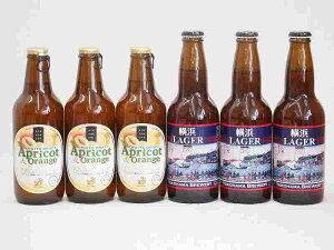 フルーツドラフト×横浜LAGERビール アプリコット&オレンジ 金しゃちビール(愛知県)330ml×6本