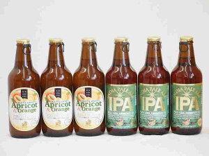 フルーツドラフト×アルコール高めインディアペールエールビール アプリコット&オレンジ 金しゃちビール(愛知県)330ml×6本