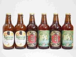 フルーツドラフト×名古屋赤味噌ラガー、プラチナエールビール アプリコット&オレンジ 金しゃちビール(愛知県)330ml×6本