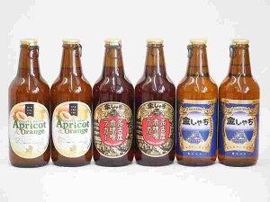フルーツドラフト×名古屋赤味噌ラガー、ピルスナービール アプリコット&オレンジ 金しゃちビール(愛知県)330ml×6本
