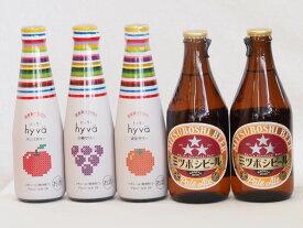 クラフトビールとリキュール5本セット(ヒュヴァ リンゴサワーalc.5% ヒュヴァ 巨峰サワーalc.5% ヒュヴァ 清見サワーalc.5% ミツボシペールエール) 200ml×3本 330ml×2本
