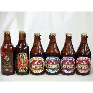 クラフトビールパーティ6本セット IPA感謝ビール330ml 名古屋赤味噌ラガー330ml ミツボシヴァイツェン330ml ミツ