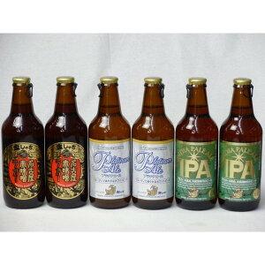 クラフトビールパーティ6本セット 名古屋赤味噌ラガー330ml×2本 プラチナエール330ml×2本 IPA330ml×2本