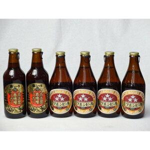 クラフトビールパーティ6本セット 名古屋赤味噌ラガー330ml×2本 ミツボシペールエール330ml×4本