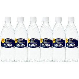 サントリーソーダ 強炭酸水 ペットボトル 無糖0cal 490ml×10本