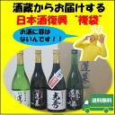 日本酒復興 復袋セットB 720ml×4本 【あす楽】 日本酒 お酒 酒 清酒 地酒 米麹 飛騨 ギフト グラス 辛口 プレゼント
