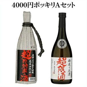 【ポッキリ価格】4000円Aセット 日本酒 お酒 酒 清酒 地酒 米麹 飛騨 ギフト 渡辺酒造店