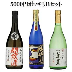 【ポッキリ価格】5000円Bセット 日本酒 お酒 酒 清酒 地酒 米麹 飛騨 ギフト 渡辺酒造店