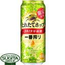 キリン 一番搾り とれたてホップ生ビール 2019 【500ml缶・ケース・24本入】(ビール)