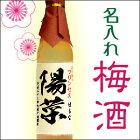 【果実が主役】名入れ地酒蔵が造る梅酒500ml.